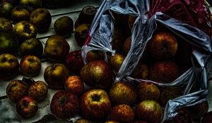 Äppletrött